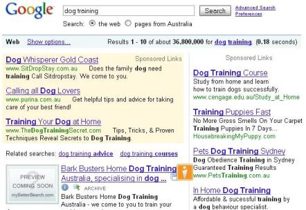 niche marketing example google results