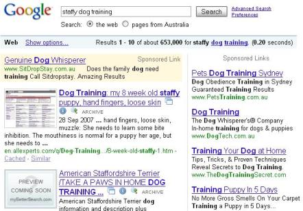 niche marketing example 2 - google results