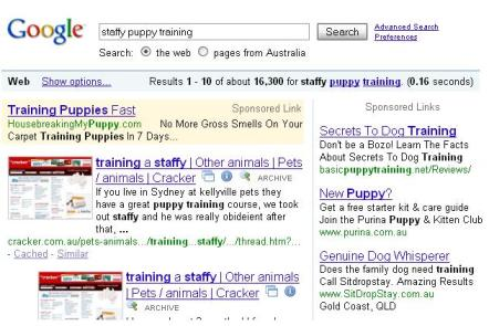 niche marketing example 3 - google results